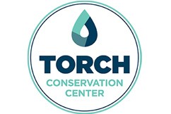 NEW Torch Lake Loon Design